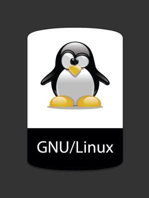Servidor Plataforma Linux